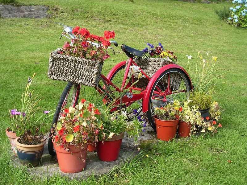 jardin décoration vélo