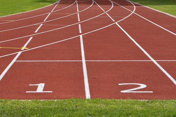 statistiques paris sportifs